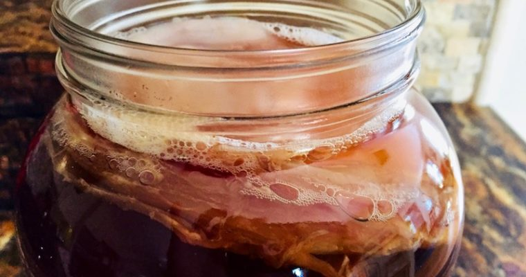 Kombucka Tea Recipe – Home Brewing with a SCOBY